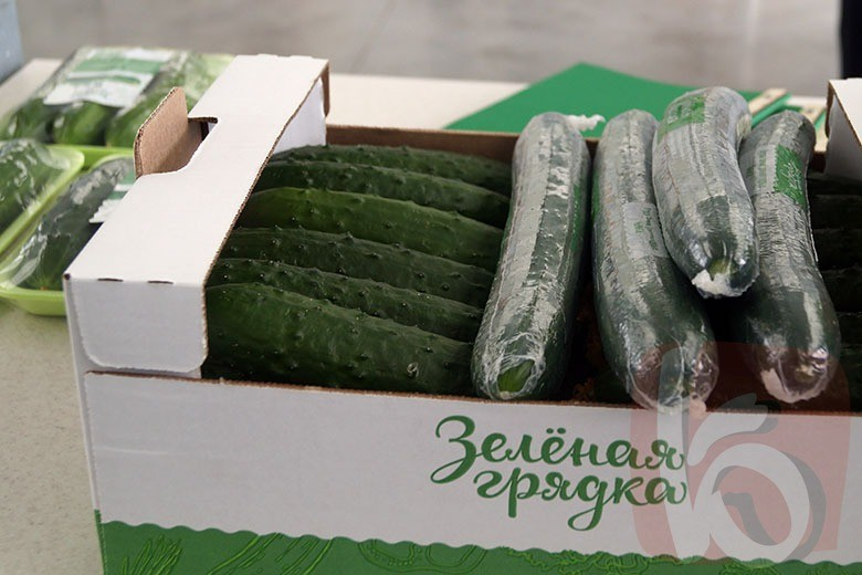 Отличные новости! В России начали производить овощи!