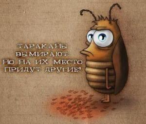 """Спасение тараканов - дело рук """"Тараканов"""""""