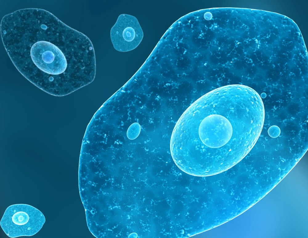 Biosimilars Create Opportunities for Sustainable Cancer Care