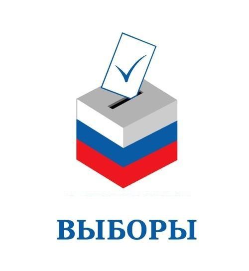 Наблюдатели внимательно следили за процессом выборов в Люберцах