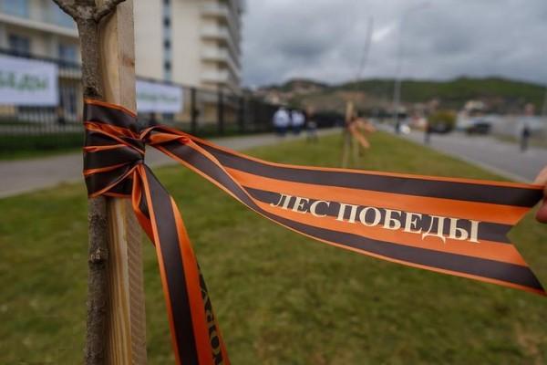 Андрей Дунаев прокомментировал проведение акции «Лес Победы»