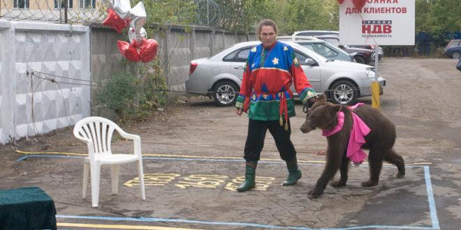 Петиция против жестокого обращения с животными бизнесменом Пинкевичем размещена на Change.org