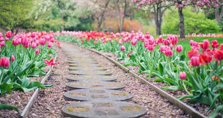 На фестивале «Цветочный джем» в столице летом появятся более 30 садов