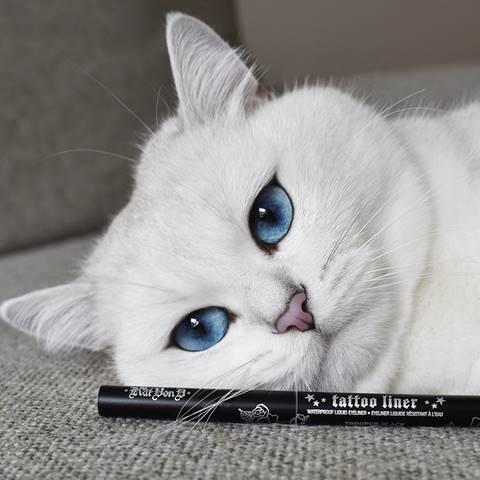 Новую рекламную кампанию CAT EYES FOR ALL запустил KVD Vegan Beauty