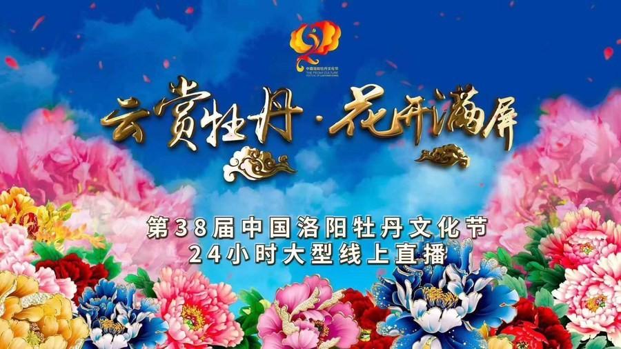 В городе Лоян организовали прямую трансляцию фестиваля пионов