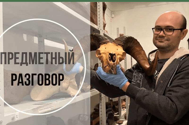 Мосметодцентр объявил о запуске нового проекта «Предметный разговор»