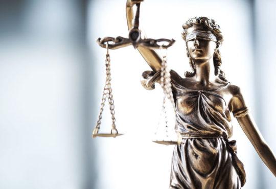 Правоту Елены Батуриной доказал очередной проигранный иск финансового управляющего Виктора Батурина