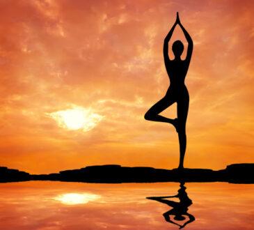 Включенные в курсы VSH25 упражнения йоги помогут добиться лучшего результата