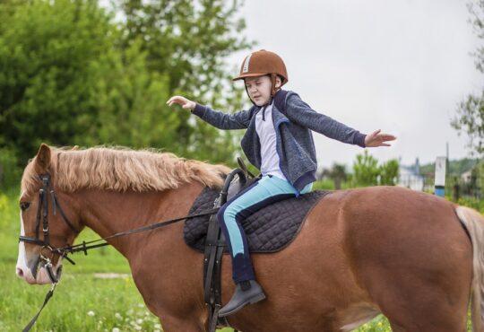 «Доктор лошадь» - программа реабилитации для детей и родителей