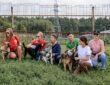 Корпоративные волонтеры передали в приюты Москвы и Подмосковья более 17 тонн кормов