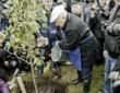 Традиция Юрия Лужкова продолжается: в Коломенском на субботнике москвичи посадят плодовые деревья
