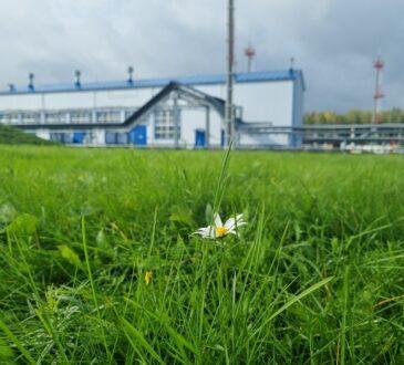 Производственные объекты ООО «Транснефть – Балтика» не оказывают негативного воздействия на окружающую среду