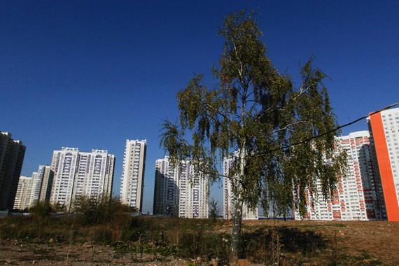 В 2019 году московские социальные организации сэкономят на аренде земли 3,1 млрд. рублей